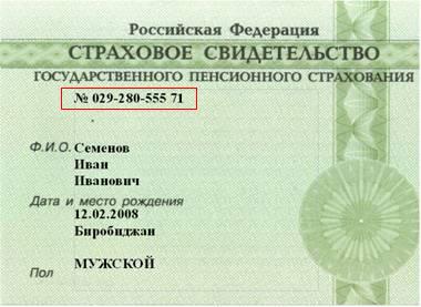 Снилс иностранному гражданину